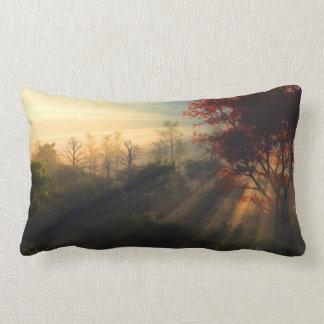 Beautiful Morning Pillow