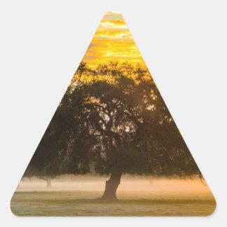 beautiful morning sunrise over farm land agricultu triangle sticker