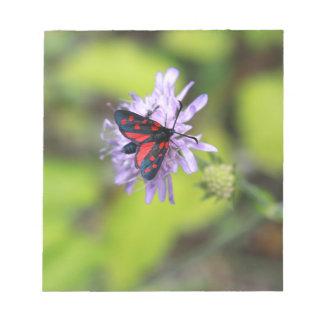 Beautiful Moth Memo Notepads