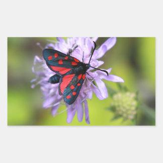 Beautiful Moth Rectangular Sticker