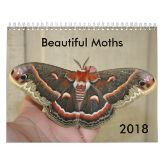Beautiful Moths Calendar 2018