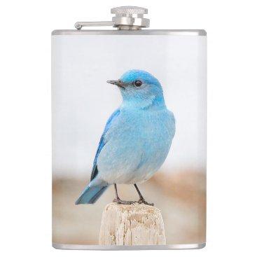 Beautiful Mountain Bluebird Flask