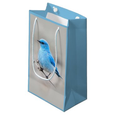 Beach Themed Beautiful Mountain Bluebird Small Gift Bag