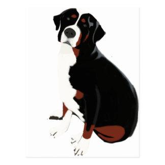 Beautiful Mountain Dog Postcard