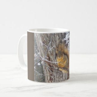 Beautiful Mug of Squirrel in Winter