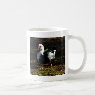 Beautiful Muscovy Drakelet Classic White Coffee Mug