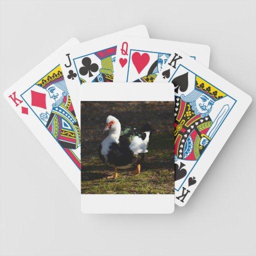 Beautiful Muscovy Drakelet Poker Deck