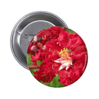 Beautiful Myrtle Abstract 2 Inch Round Button