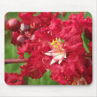 Beautiful Myrtle Abstract Mouse Pad