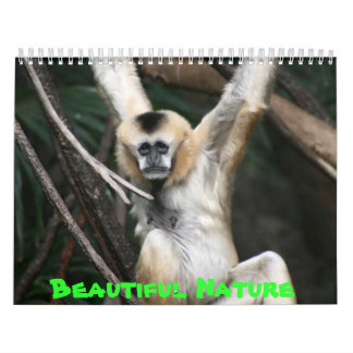 Beautiful Nature Calendar