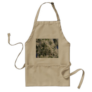 Beautiful Nature Photo Of White Apple Blossom Aprons