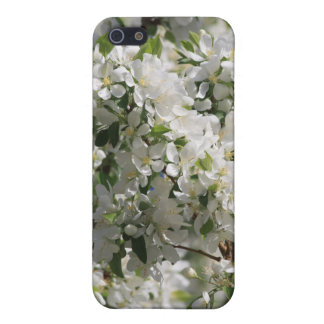 Beautiful Nature Photo Of White Apple Blossom Cover For iPhone SE/5/5s