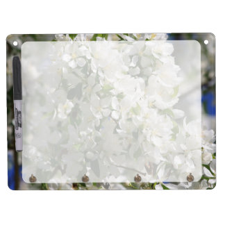 Beautiful Nature Photo Of White Apple Blossom Dry-Erase Boards