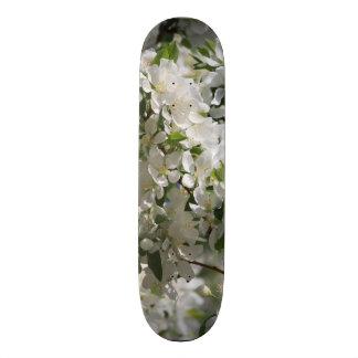 Beautiful Nature Photo Of White Apple Blossom Skateboard