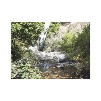 Beautiful Nature Scene in Utah Canvas Print