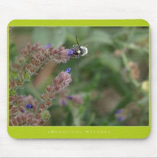 Beautiful Nature: wasps - Mousepad