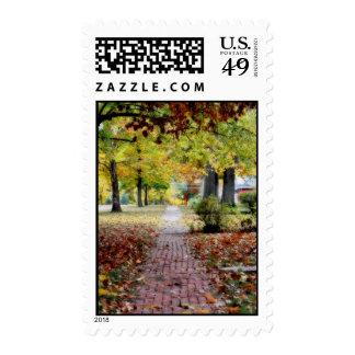 Beautiful Neighborhood with fall scene Stamps