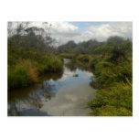 Beautiful New Zealand Landscape. Quiet, reflective Postcard