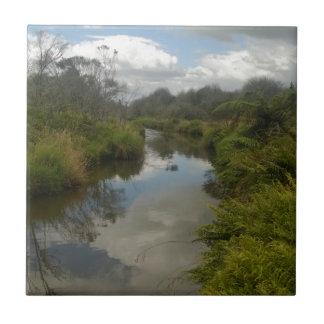 Beautiful New Zealand Landscape. Quiet, reflective Tile