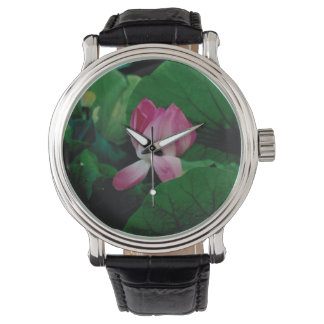 Beautiful Nymphaea Flower Watch