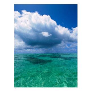 Beautiful Ocean Naturescape Postcard