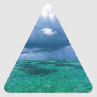 Beautiful Ocean Naturescape Triangle Sticker