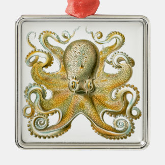 Beautiful octopus picture by Haeckel Metal Ornament