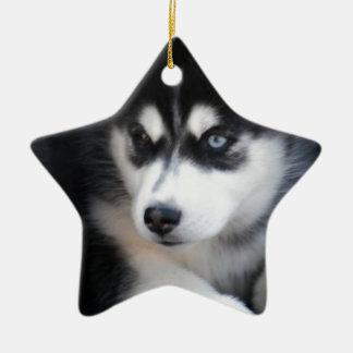 Beautiful One Blue Eye Siberian Husky 2 Ceramic Ornament