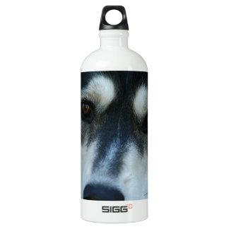 Beautiful One Blue Eye Siberian Husky Aluminum Water Bottle
