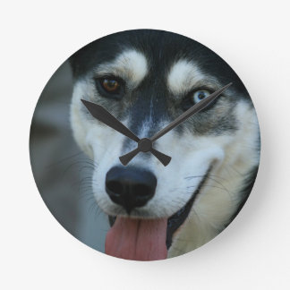 Beautiful One Blue Eye Siberian Husky Round Wall Clocks