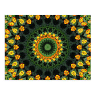 Beautiful Orange and Yellow Lantana Kaleidoscope 1 Postcard