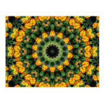 Beautiful Orange and Yellow Lantana Kaleidoscope 2 Postcard