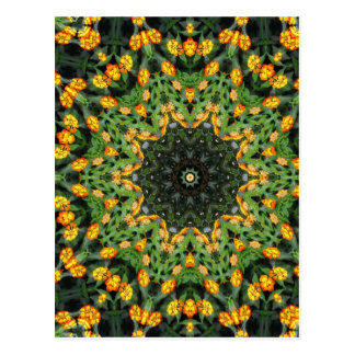 Beautiful Orange and Yellow Lantana Kaleidoscope 3 Postcard