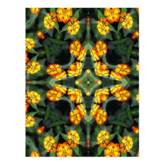 Beautiful Orange and Yellow Lantana Kaleidoscope 4 Postcard