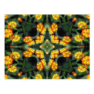 Beautiful Orange and Yellow Lantana Kaleidoscope 4 Postcard