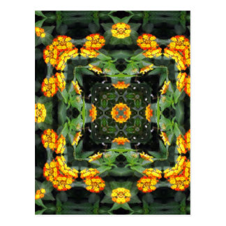 Beautiful Orange and Yellow Lantana Kaleidoscope 5 Postcard