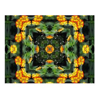 Beautiful Orange and Yellow Lantana Kaleidoscope 5 Postcard