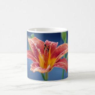 Beautiful orange day lily with rain drops, Signed! Classic White Coffee Mug