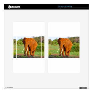 Beautiful Orange Elephant Kindle Fire Decals
