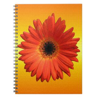 Beautiful Orange Gerbera Daisy Notebook