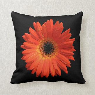 Beautiful Orange Gerbera Daisy Pillows