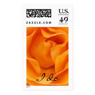Beautiful Orange Hybrid Tea Rose I Do Wedding Postage