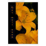 Beautiful Orange Lily Flowers get well card