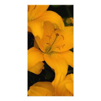 Beautiful orange lily flowers photo card