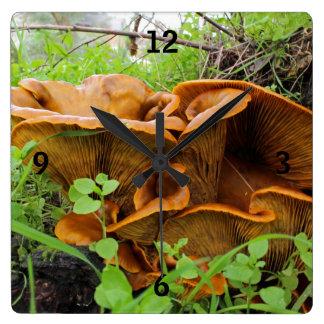 Beautiful Orange Mushrooms Wall Clock