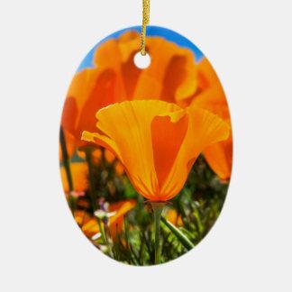 Beautiful Orange Poppy Flowers in a Field Ornaments
