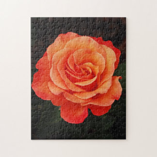 Beautiful orange rose print puzzle