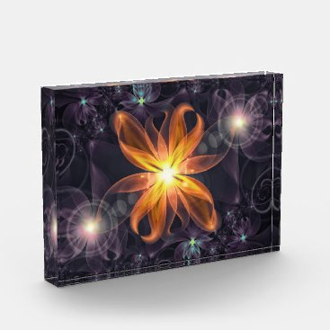 Halloween Themed Beautiful Orange Star Lily Fractal Flower at Night Photo Block