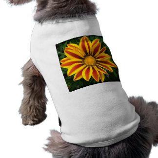 Beautiful Orange Sun Flower Photo Shirt