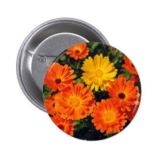 Beautiful orange zinnia flower garden pinback button